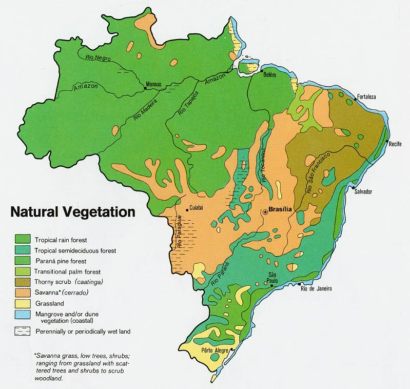 Brazil Vegetation Map 1977