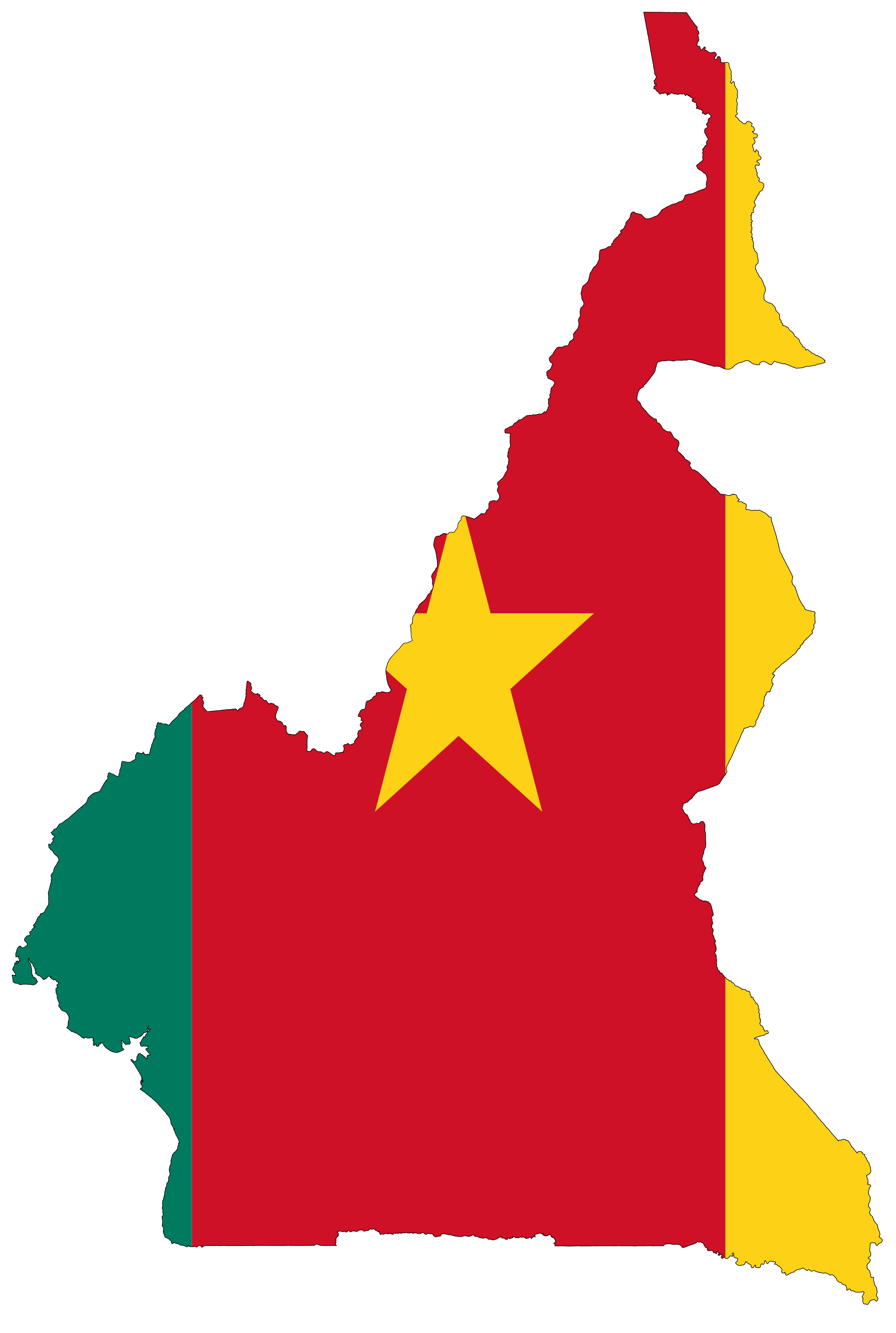 Cameroon Flag Map large map