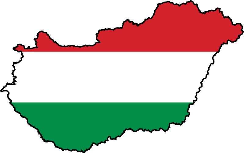 В ереване сожжён флаг венгрии — все