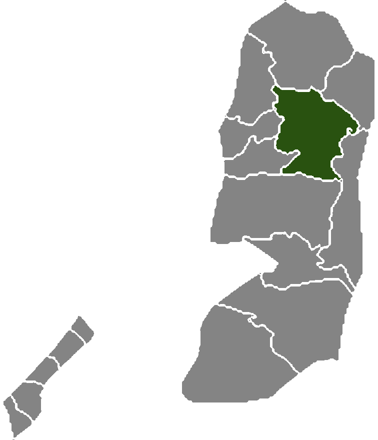 Palestine Districts Nablus large map