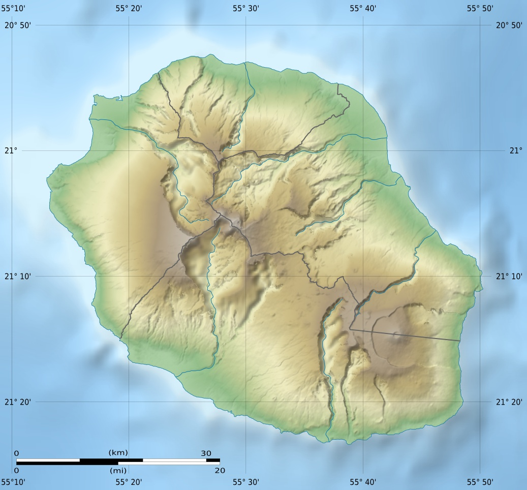 Reunion Department Relief Map large map