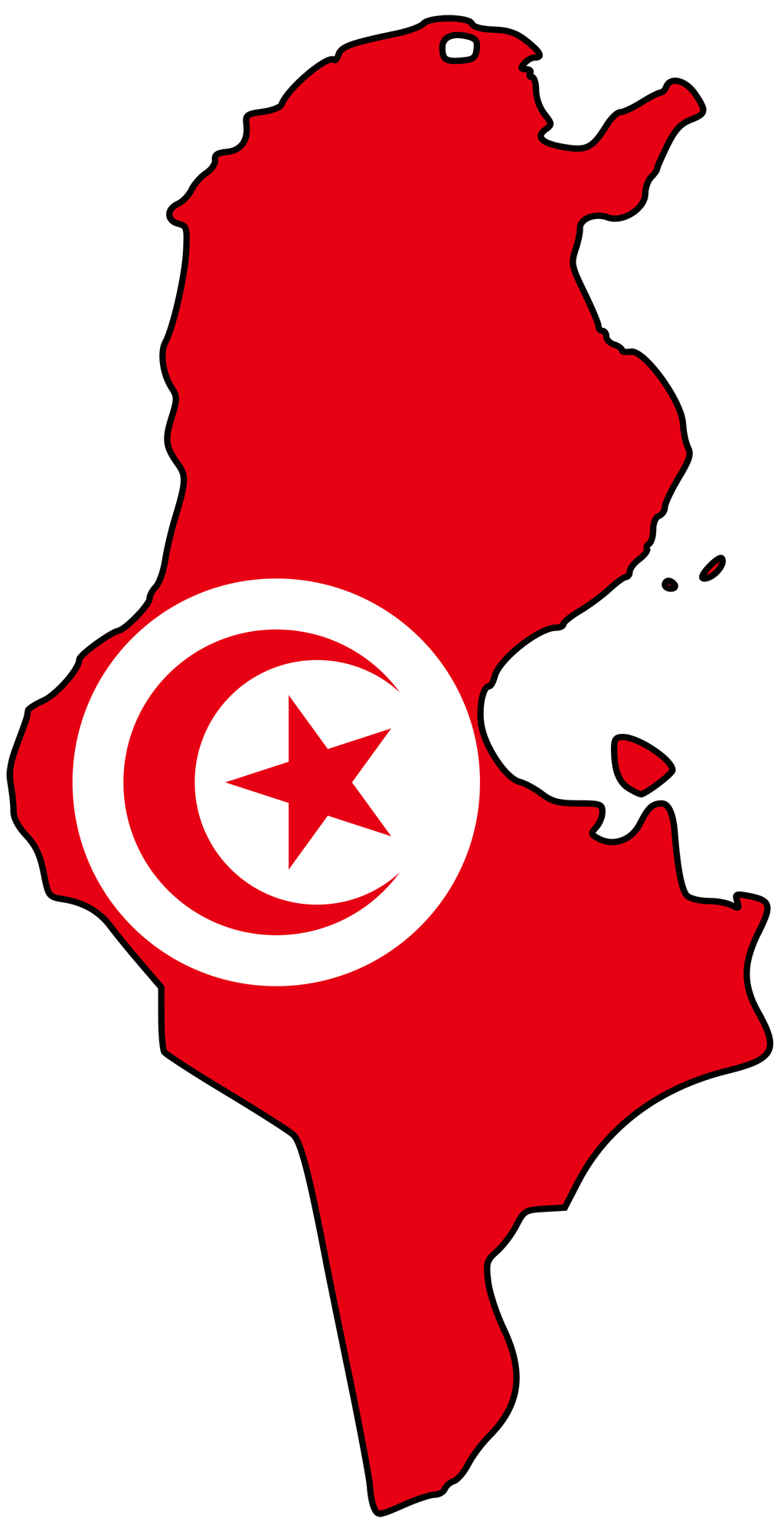 Tunisia Flag Map large map