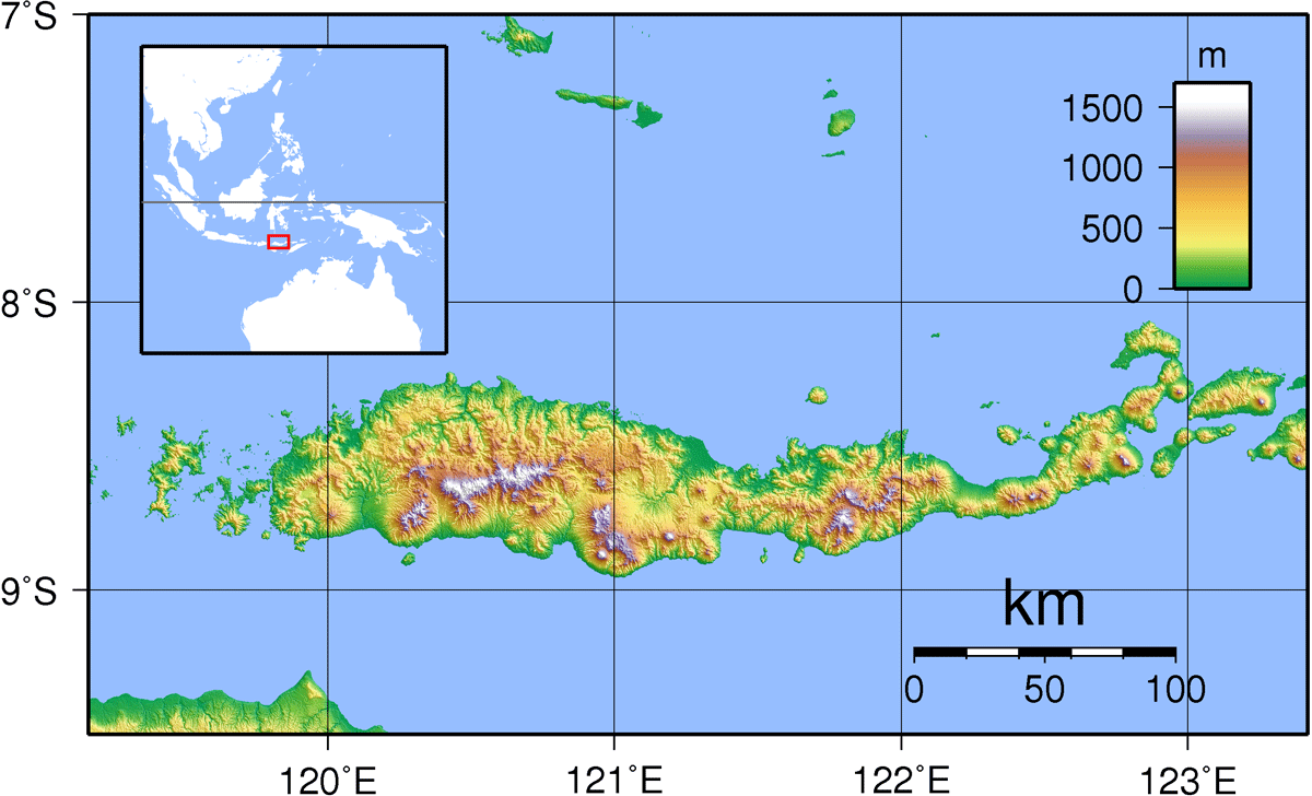 Flores Topography large map