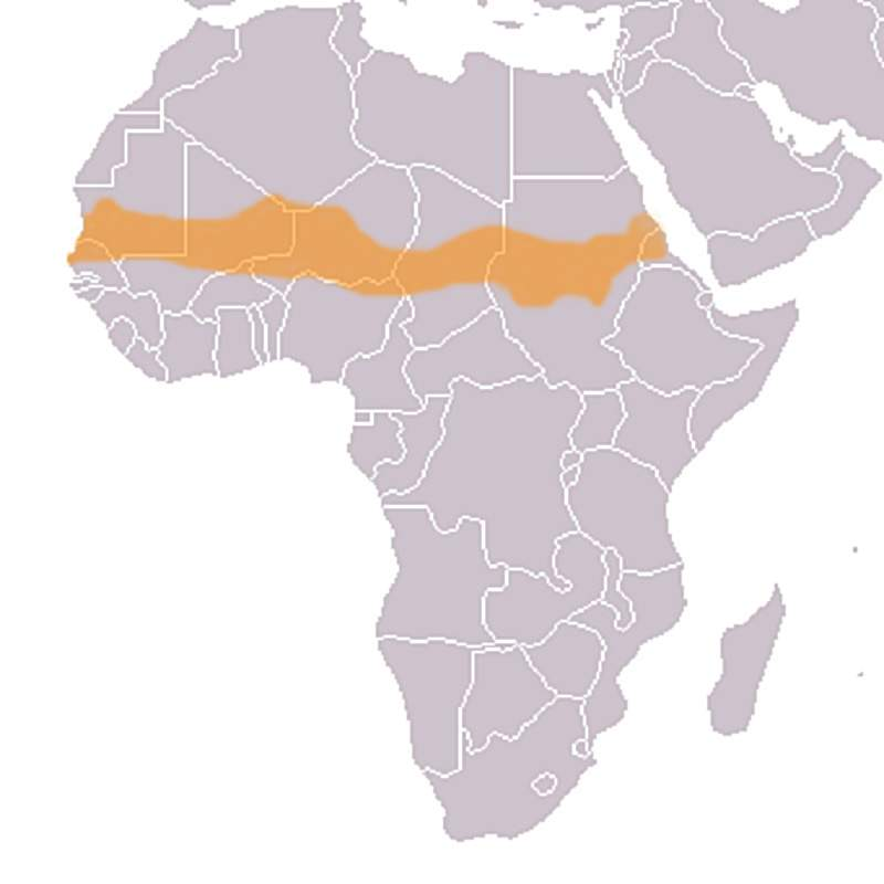 africa map the sahel