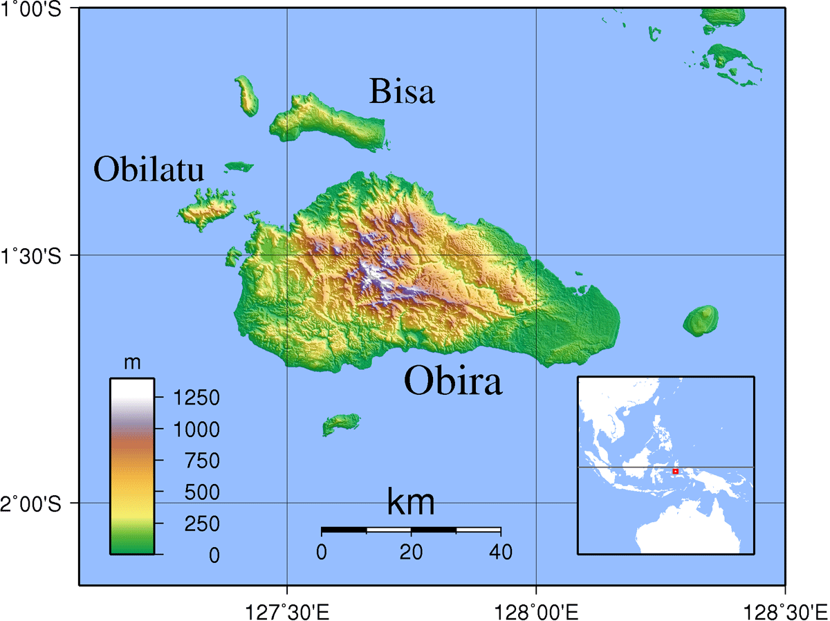 Obi Islands Topography large map