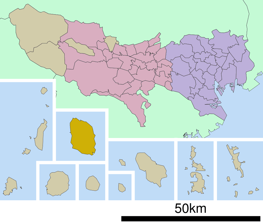Oshima Town In Tokyo Prefecture Ja large map