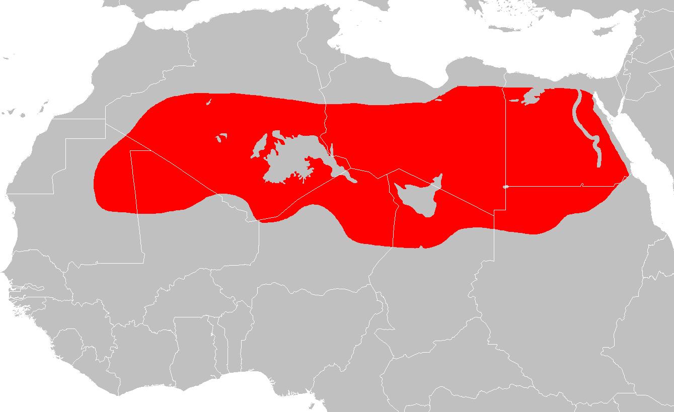 Pa1327 Map 4 large map