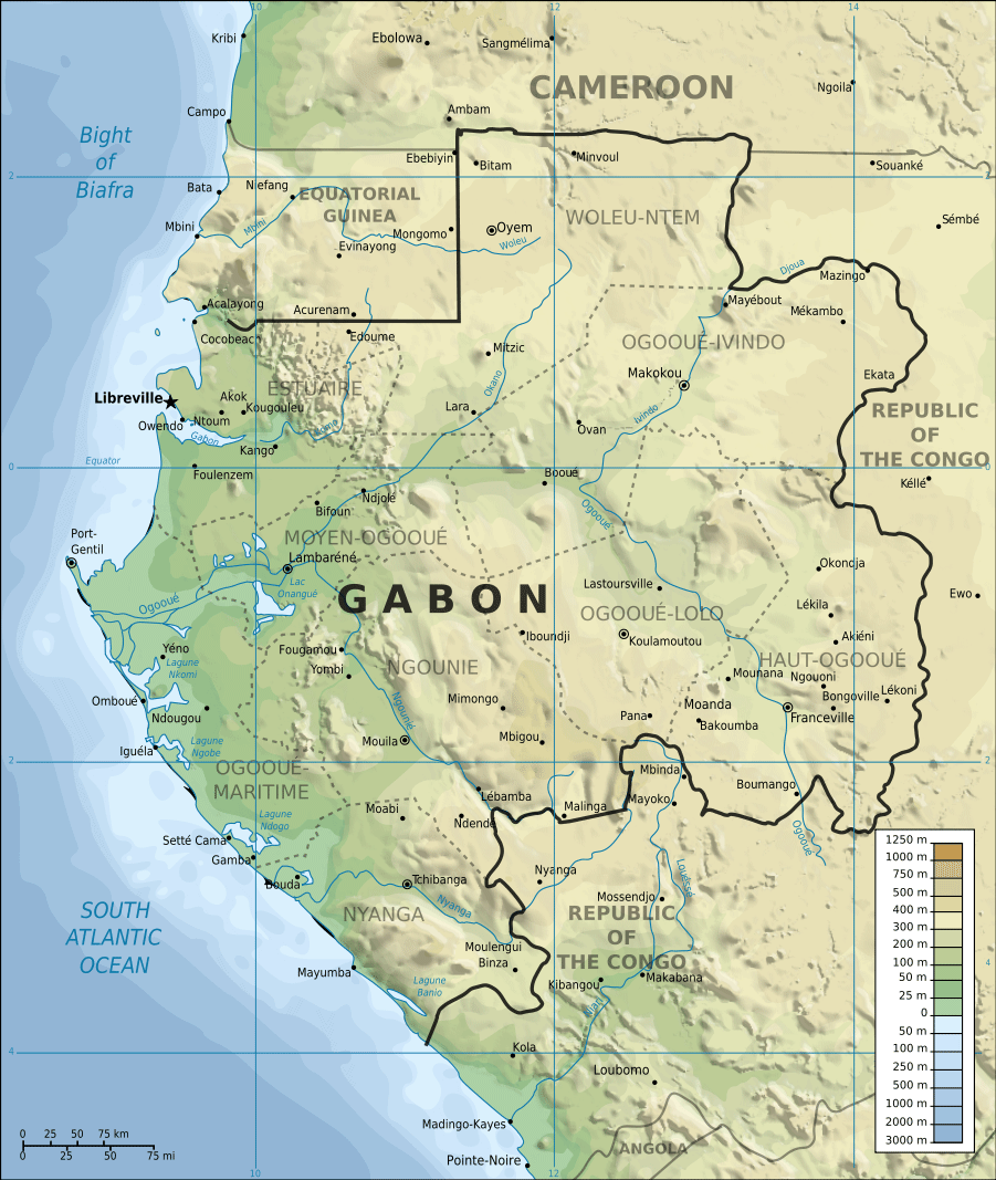Topographic Map of Gabon En large map