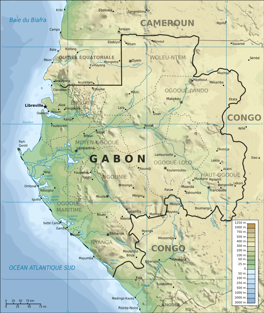Topographic Map of Gabon Fr large map