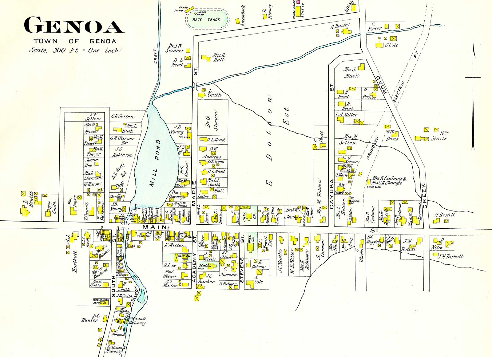 Town of Genoa Map large map