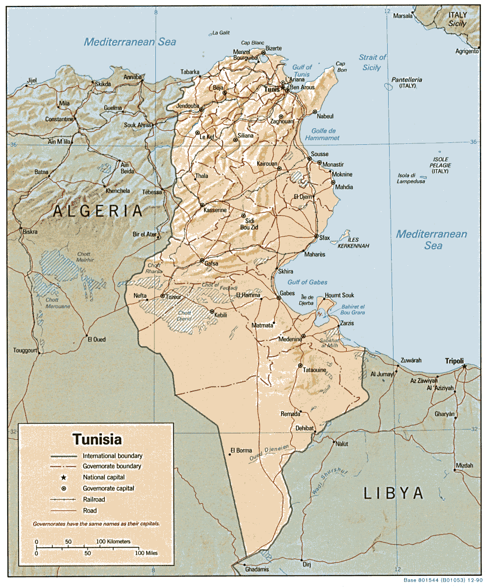 Tunisia Relief Map large map