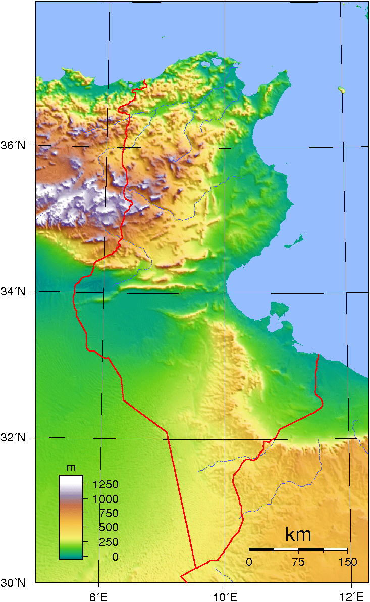 Tunisia Topography large map