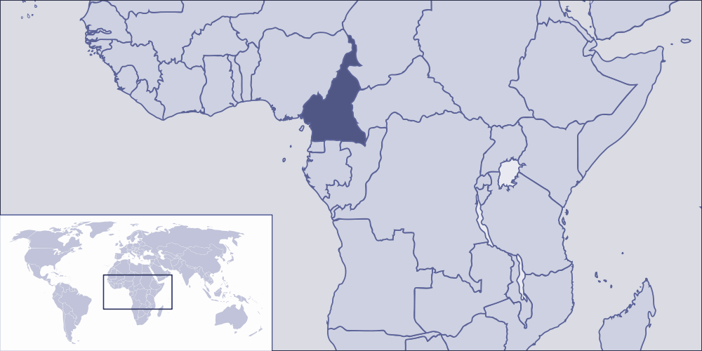 Where Is Cameroon Located large map