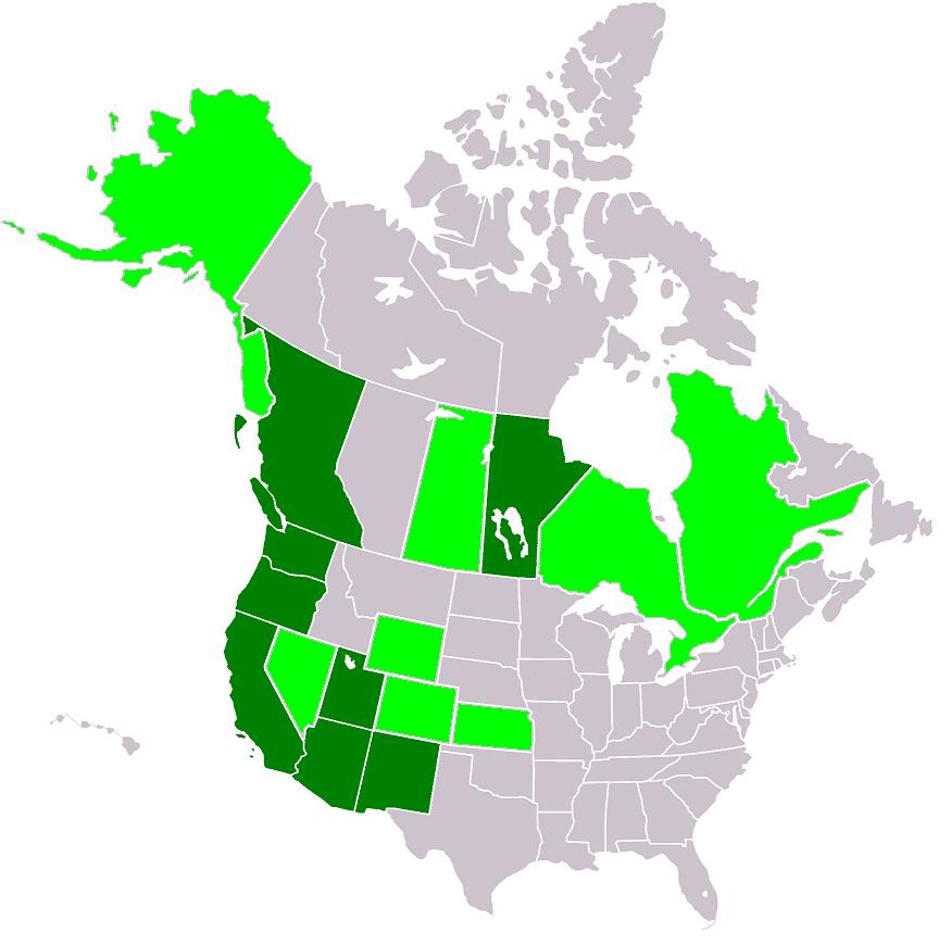 Wrcai Map2 large map