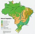 Brazil Vegetation Map 1977 - Mapsof.Net Map
