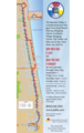 Jacksonville Trolley Map - Mapsof.Net Map