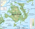 Russky Island Topographic Map - Mapsof.Net Map